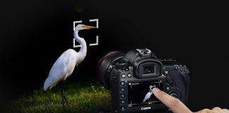 Canon, reiger, Dual Pixel CMOS