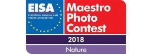 Eisa Maestro Photo Contest 2018