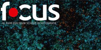 Focus 1 2020