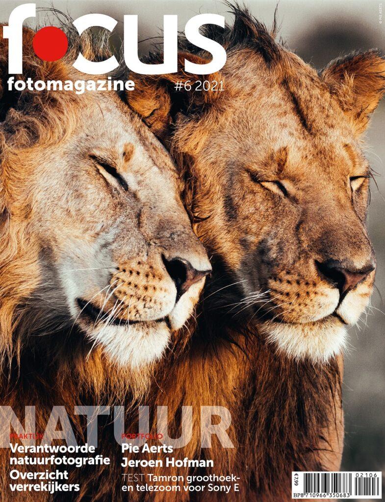 cover Focus 6